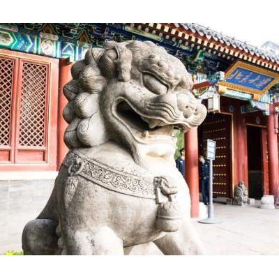 营销总监培训班-北京大学新营销实战高级研修班