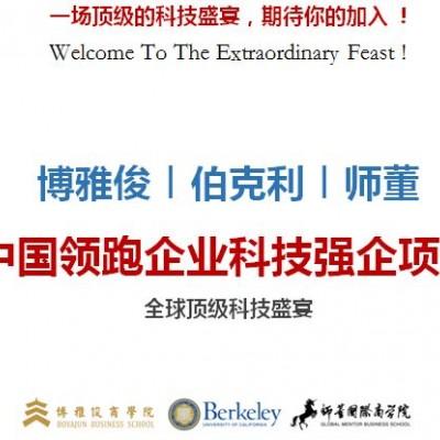 中国领跑企业科技强企项目
